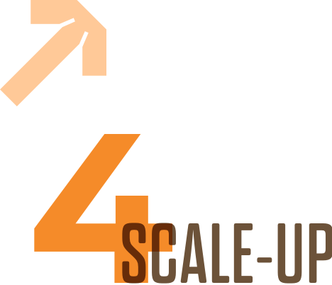 Scale Up Icon